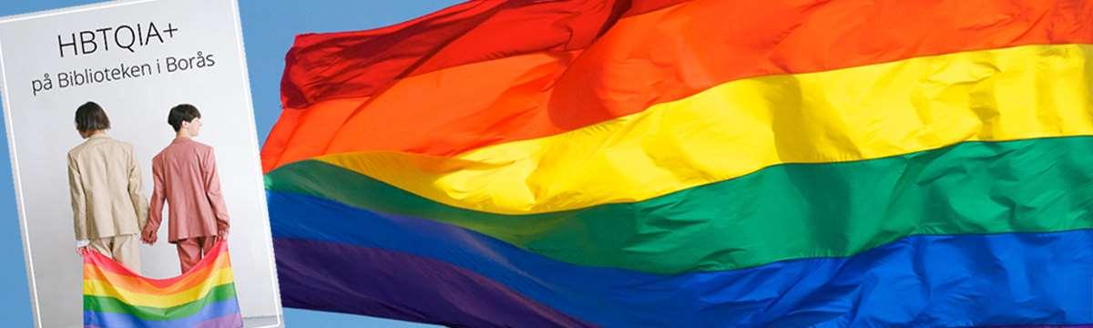 regnbågsflagga med pridefolder